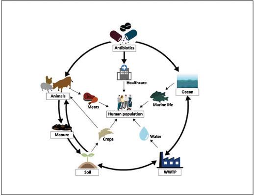 Current Genomics | Bentham Science