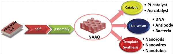 Nanoporous Anodic Aluminum Oxide Naao For Catalytic Biosensing