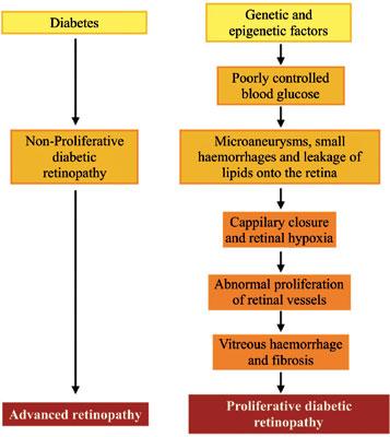 Pathological Perturbations in Diabetic Retinopathy