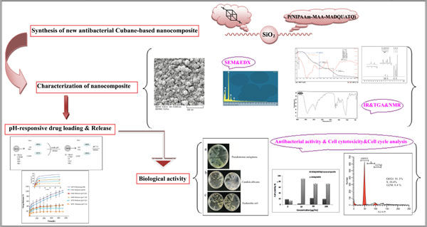 synthesis of janus nanocomposites for drug delivery system In contrast we report the solgel synthesis of eccentric janus nanoparticles  and  a potential starting point for building a controlled drug delivery system.