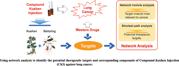 Molecular Evidence of Compound Kushen Injection Against Lung Cancer: A Network Pharmacology-Based Investigation from Western Medicine to Traditional Medicine