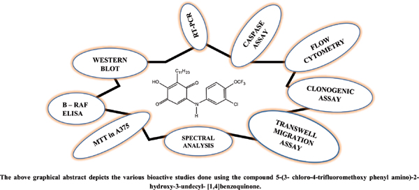 A Fluoro Derivative of Embelin, as Potent B-RAF Inhibitor in Melanoma