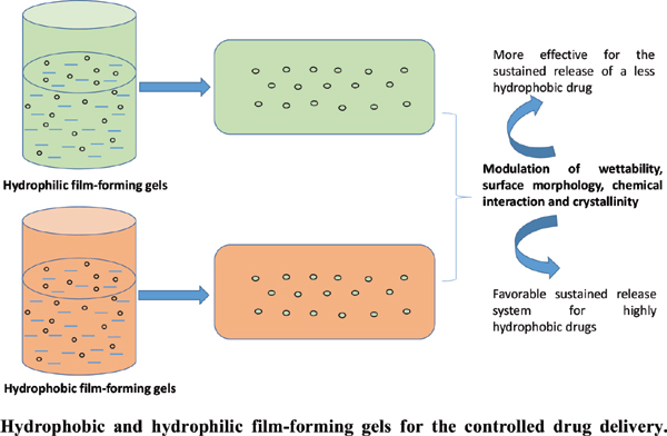 Hydrophobic and Hydrophilic Film-Forming Gels for the Controlled Delivery of Drugs with Different Levels of Hydrophobicity