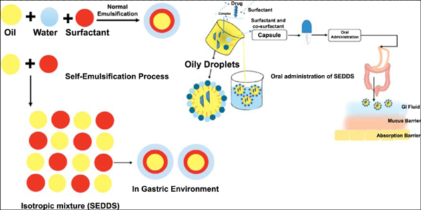 Self-Emulsifying Drug Delivery System (SEDDS) and its Pharmaceutical Applications