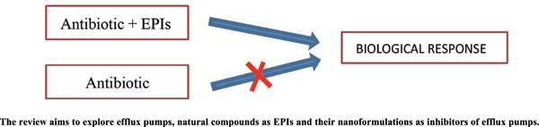 Efflux Pump and its Inhibitors: Novel Targets to Combat Drug Resistance