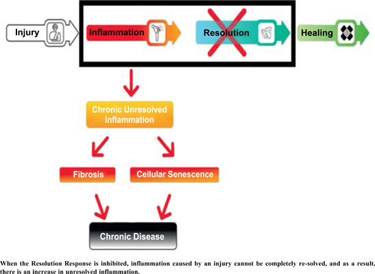 Dietary Technologies to Optimize Healing from Injury-Induced Inflammation