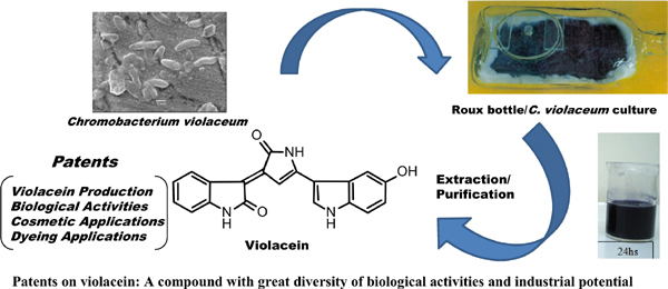 Patents on Violacein: A Compound with Great Diversity of Biological Activities and Industrial Potential