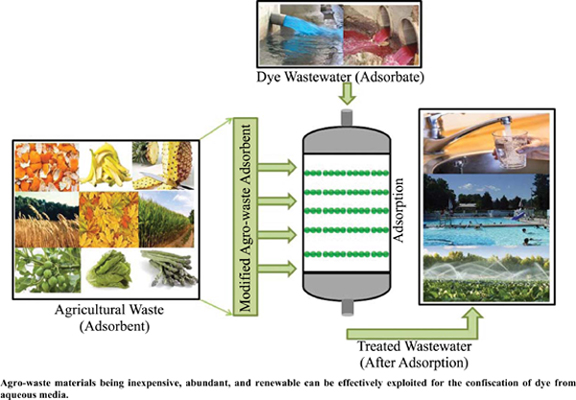 Environmental Application of Agro-waste Derived Materials for the Treatment of Dye-polluted Water: A Review