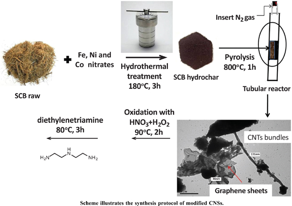 Modified Carbon Nanostructures Obtained from Sugarcane Bagasse Hydrochar for Treating Chromium-polluted Water