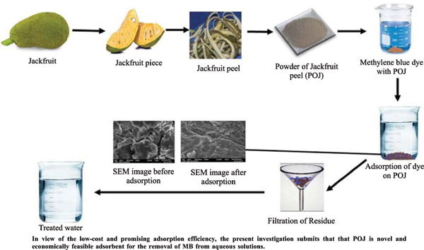 Utilization of Jackfruit Peel as a Low-cost Adsorbent for the Removal of Methylene Blue Dye from Synthetically Polluted Water
