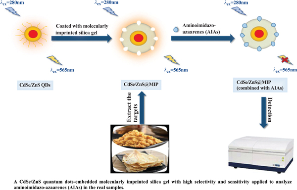 Selective Optosensing of Aminoimidazo-Azaarenes (AIAs) by CdSe/ZnS Quantum Dots-embedded Molecularly Imprinted Silica Gel