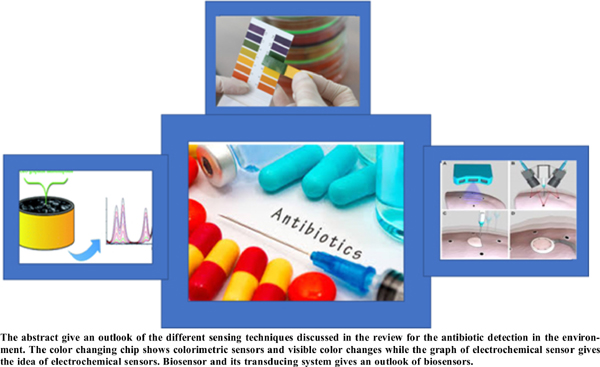 Sensors as a Modern Tool for the Detection of Cephalosporin Antibiotics in the Environment: A Short Review