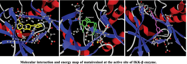 Design of Potential IKK-β Inhibitors using Molecular Docking and Molecular Dynamics Techniques for their Anti-cancer Potential