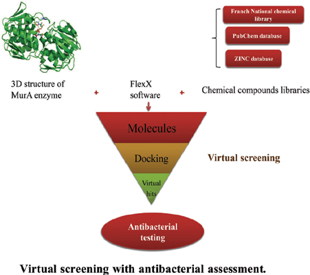 Investigation of New Inhibitors of UDP-N-Acetylglucosamine Enolpyruvyl Transferase (MurA) by Virtual Screening with Antibacterial Assessment