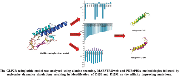 Designing Novel Teduglutide Analogues with Improved Binding Affinity: An <i>In Silico</i> Peptide Engineering Approach