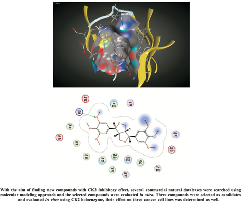<I>In Silico</I> and <I>In Vitro</I> Studies of Natural Compounds as Human CK2 Inhibitors
