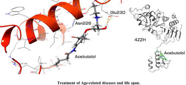 In Silico Design of Novel Sirtuin 1 Enzyme Activators for the Treatment of Age-related Diseases and Life Span