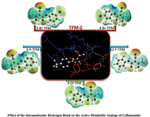 Effect of the Intramolecular Hydrogen Bond on the Active Metabolite Analogs of Leflunomide for Blocking the <i>Plasmodium falciparum</i> Dihydroorotate Dehydrogenase Enzyme: QTAIM, NBO, and Docking Study