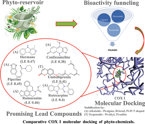 Comparative COX I Molecular Docking of Phyto-chemicals (Flavonoids, Alkaloids, Lignans and Terpenoids) for Anti-platelet Aggregation Dynamics