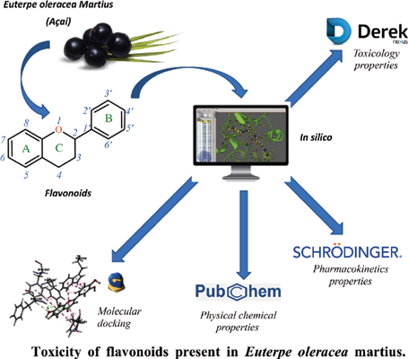 Molecular Docking, Physicochemical Properties, Pharmacokinetics and Toxicity of Flavonoids Present in <i>Euterpe oleracea</i> Martius