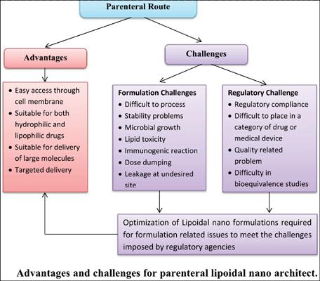 Lipoidal-Nano Architecture for Parental Drug Delivery: Formulation Development and Regulatory Concerns
