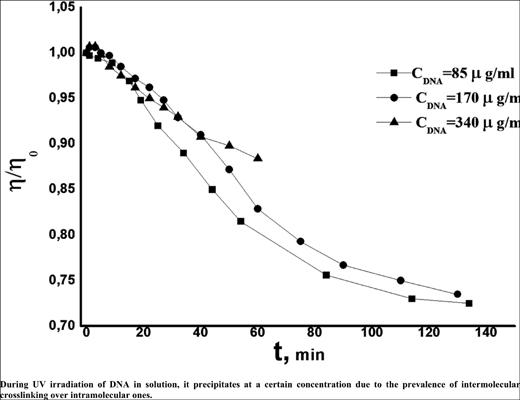 Molecular Transformations in DNA under the Influence of UV-radiation