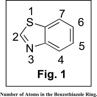 A Mini Review on Recent Advancements in the Therapeutic Potentials of Benzothiazoles
