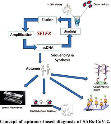 Aptamer Based Diagnosis: A Cost-Effective and Suitable Point of Care Testing Method Against SARS Coronavirus-2 (SARs-CoV-2) and Other Rapidly Spreading Diseases