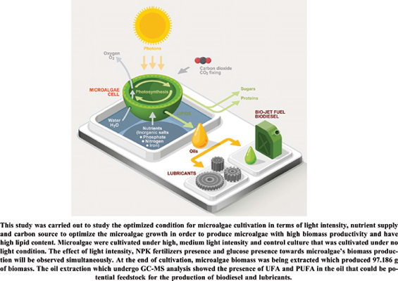 Investigations of Light Intensities, Nutrient, and Carbon Sources Towards Microalgae Oil Production <I>via</I> Soxhlet Extraction Techniques