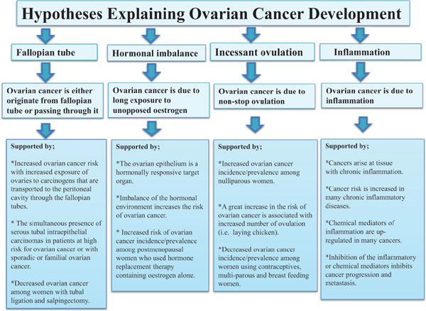 Towards Prevention Of Ovarian Cancer Bentham Science