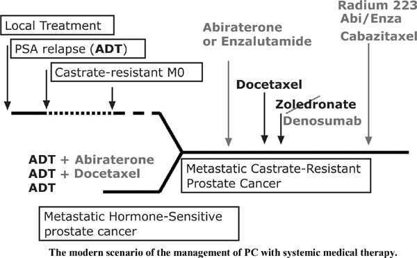 Management of Prostate Cancer with Systemic Therapy: A Prostate Cancer Unit Perspective