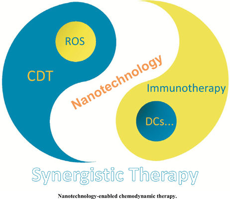 Nanotechnology-enabled Chemodynamic Therapy and Immunotherapy