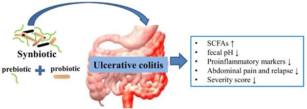 Use of Synbiotics for Ulcerative Colitis Treatment