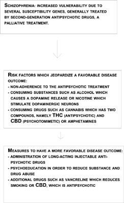 Long-term Administration of Antipsychotic Drugs in Schizophrenia and Influence of Substance and Drug Abuse on the Disease Outcome