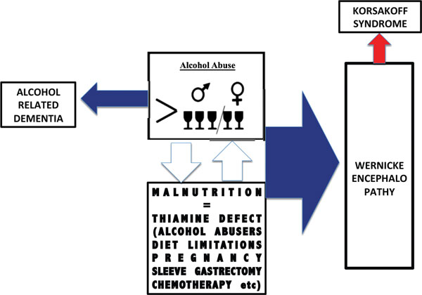 Thiamine and Alcohol for Brain Pathology: Super-imposing or Different Causative Factors for Brain Damage?