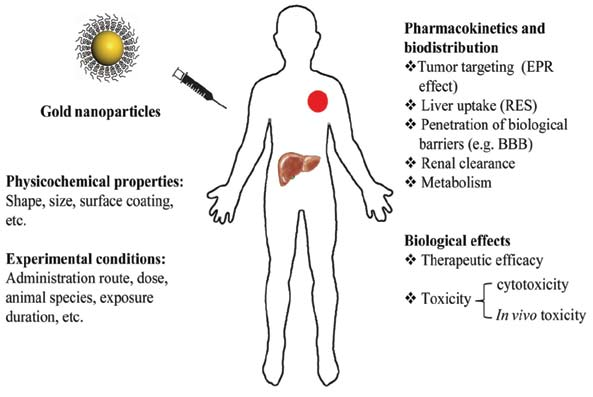 Pharmaceutics | Special Issue : New Drug Delivery across