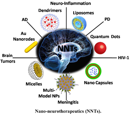 Nano-Neurotherapeutics (NNTs): An Emergent and Multifaceted Tool for CNS Disorders