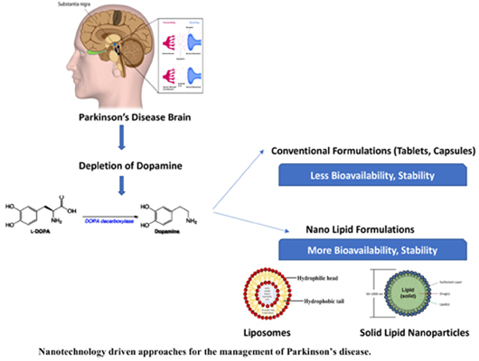 Nanotechnology Driven Approaches for the Management of Parkinson's Disease: Current Status and Future Perspectives
