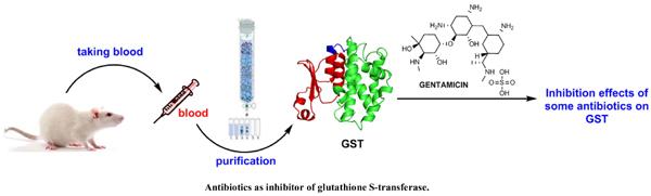 Antibiotics as Inhibitor of Glutathione S-transferase: Biological Evaluation and Molecular Structure Studies