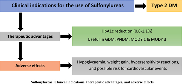Efficacy and Cardiovascular Safety of Sulfonylureas