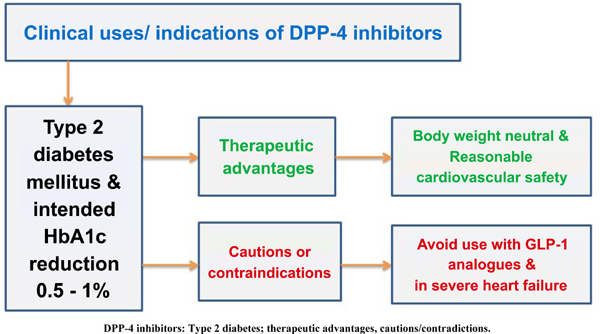 Efficacy and Cardiovascular Safety of DPP-4 Inhibitors