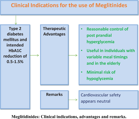 Efficacy and Cardiovascular Safety of Meglitinides