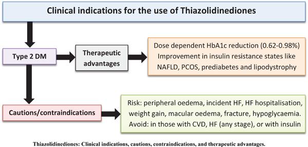 Efficacy and Cardiovascular Safety of Thiazolidinediones