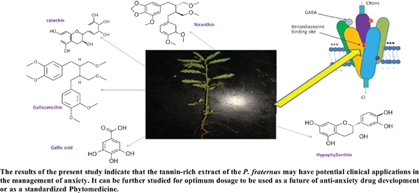 Pharmacological and <i>In-Silico</i> Investigations of Anxiolytic-like Effects of <i>Phyllanthus Fraternus</i>: A Probable Involvement of GABA-A Receptor
