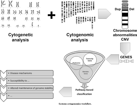 Systems Cytogenomics: Are We Ready Yet?