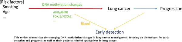 DNA Methylation Markers in Lung Cancer