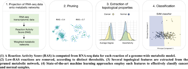 On the Use of Topological Features of Metabolic Networks for the Classification of Cancer Samples