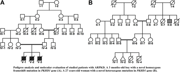 Identification of Two Novel Mutations in <i>PKHD1</i> Gene from Two Families with Polycystic Kidney Disease by Whole Exome Sequencing