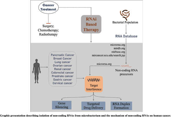 Potential Non-coding RNAs from Microorganisms and their Therapeutic Use in the Treatment of Different Human Cancers
