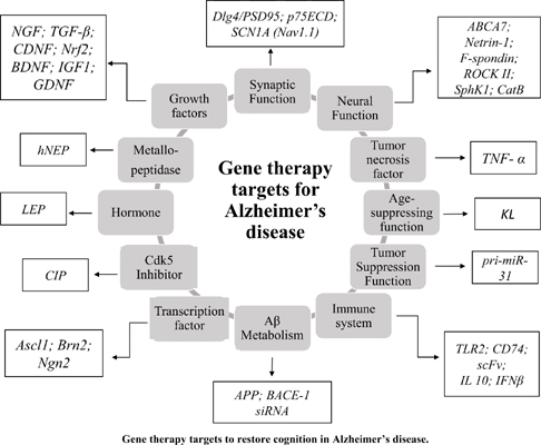 Efficacy of Gene Therapy to Restore Cognition in Alzheimer's Disease: A Systematic Review